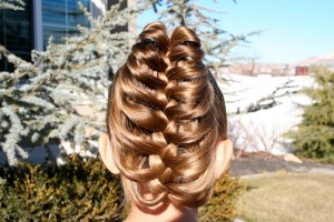 Back view of the Braid Hairstyles | The Cage Braid