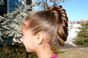 Side view of the Braid Hairstyles | The Cage Braid Ponytail