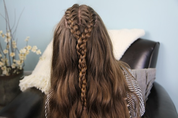Double French Braid and Twist | Braid Hairstyles