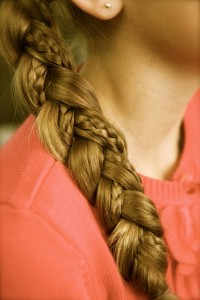 Close-up view of the Braid with Micro-Braid Accents | Braid Hairstyles