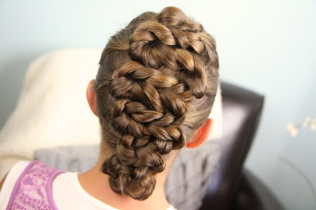 Back view of the Twisted Zig-Zag Hairstyle | Updo Hairstyles