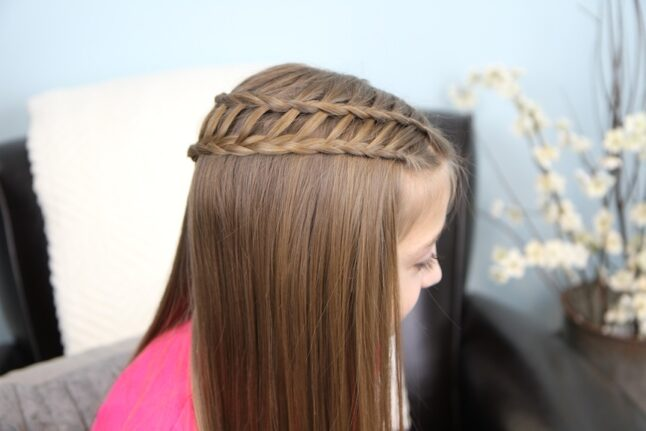Side view of Ladder Braid Combo | Cute Hairstyles