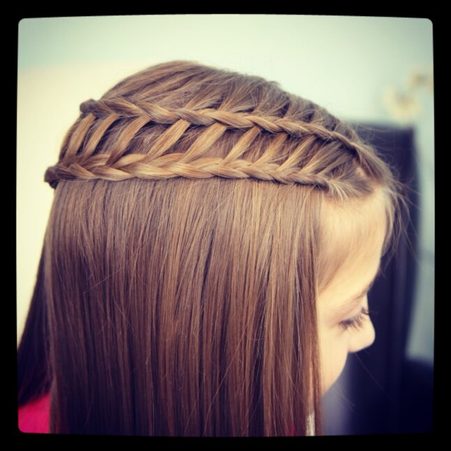 Top view of Ladder Braid Combo | Cute Hairstyles