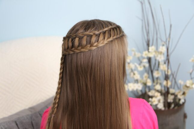 Back view of Ladder Braid Combo | Cute Hairstyles