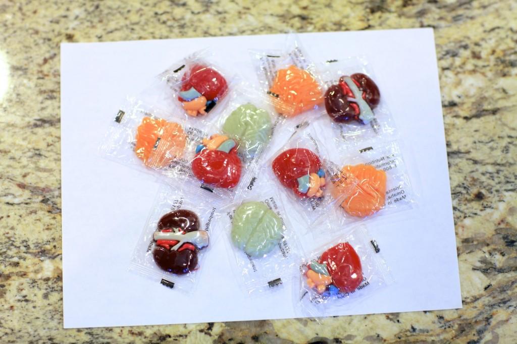 Gummy Organs