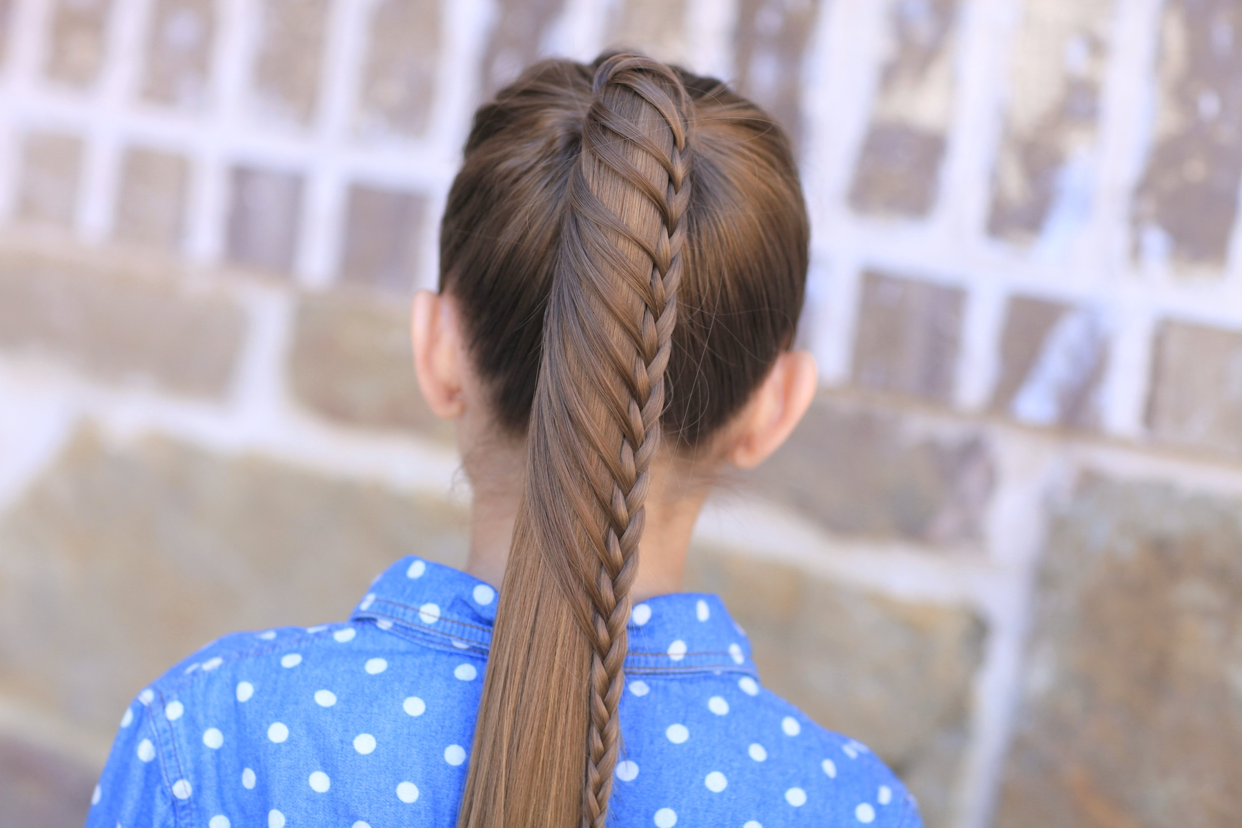Cute Hair Styles With Braids: Lace Braided Ponytail And Updo