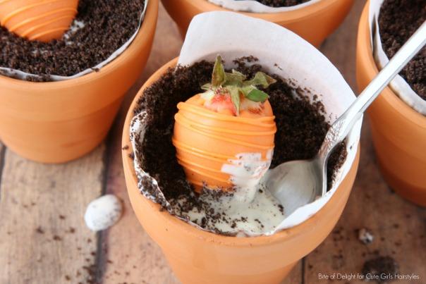 Carrot Dessert Pots 2