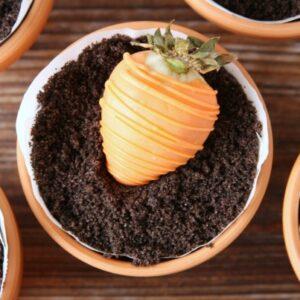 Springtime Dessert Pots | Treat | Garden Carrot | Dessert Recipe