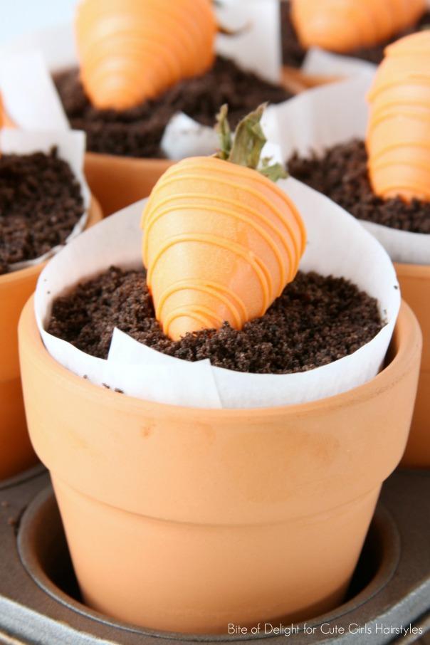 Carrot Dessert Pots 5