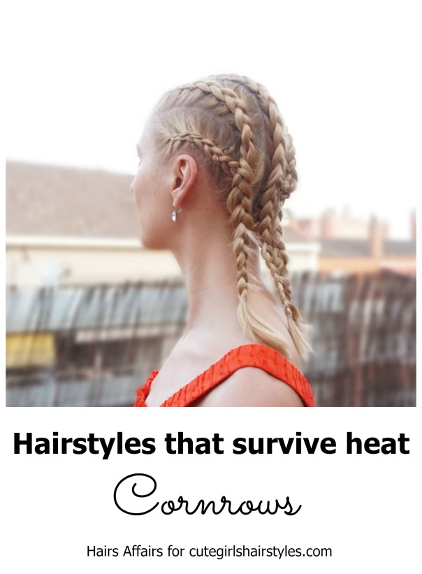 Corn Rows | CGH Lifestyle