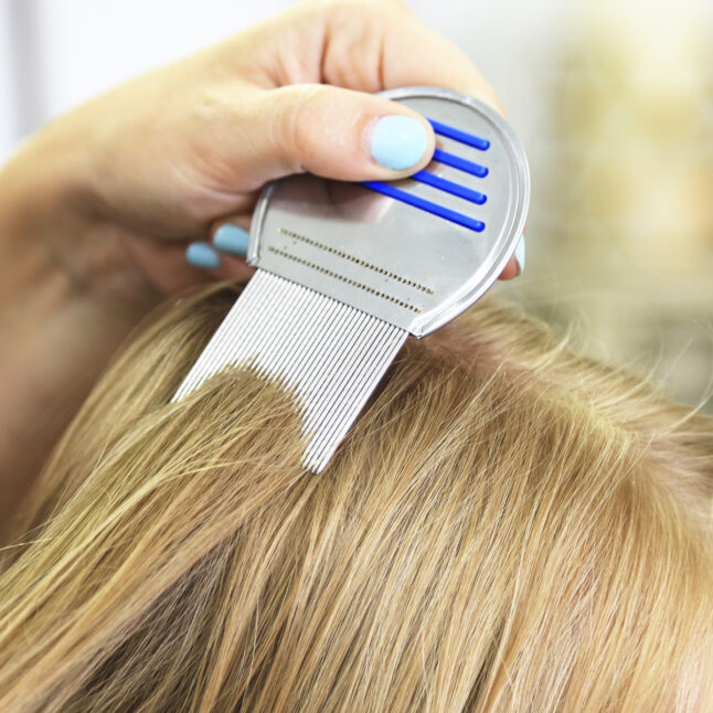 Mom using comb to brush out lice out of blonde daughter's hair